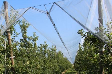 Karl Mayer shade nets